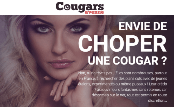 avis cougars avenue